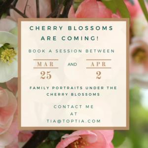 TopTia Cherry Blossom Ad